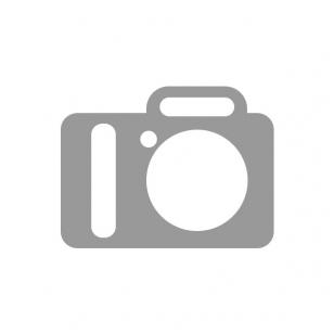 Geigerio - Miulerio skaitiklis