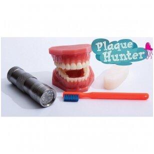 Dantų apnašų modelis