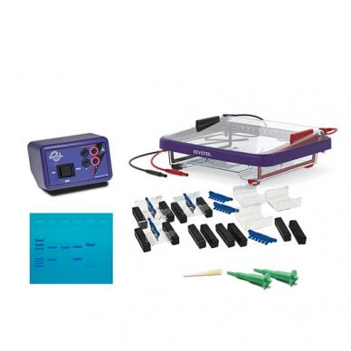 Klasės DNR Elektroforezės laboratorijos rinkinys