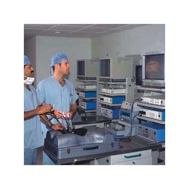 Liemens chirurgijos ir laparoskopijos modelis 2