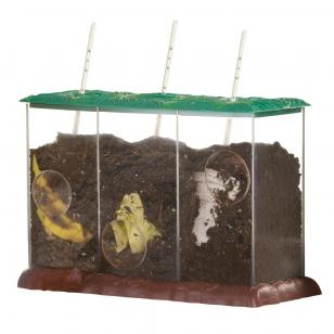 Permatomas kompostavimo stebėjimo indas