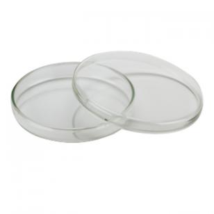 Petri lėkštelės, stiklinės, matmenys 100 x 15 mm, 10 vnt.
