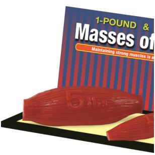 Raumenų masės modelis (2,3 kg)