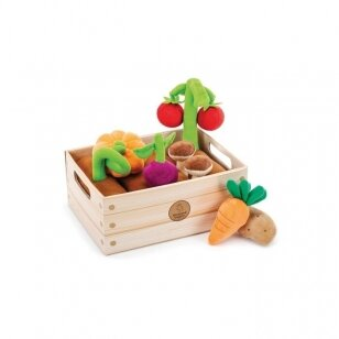 """Rinkinys """"Daržovių krepšelis"""""""