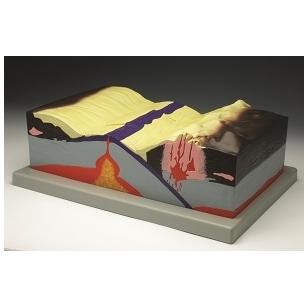 Tektoninės plokštės modelis
