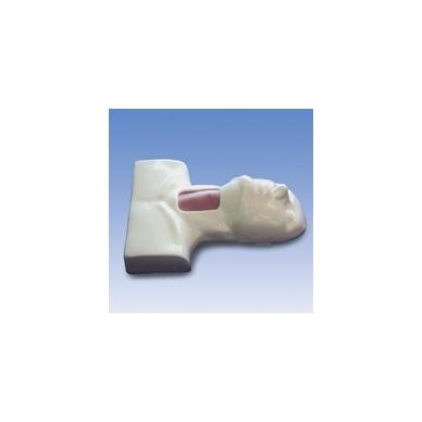 Tracheotomijos modelis