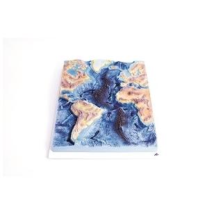 Vidurio Atlanto kalnagūbrio modelis